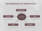 Educational Psychology: Can you analyze the vagaries played by the environmental determinants on the development of the personality of a young pupil?