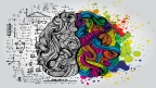 CURRICULUM DEVELOPMENT: What are the psychologicalfoundations of the curriculum?